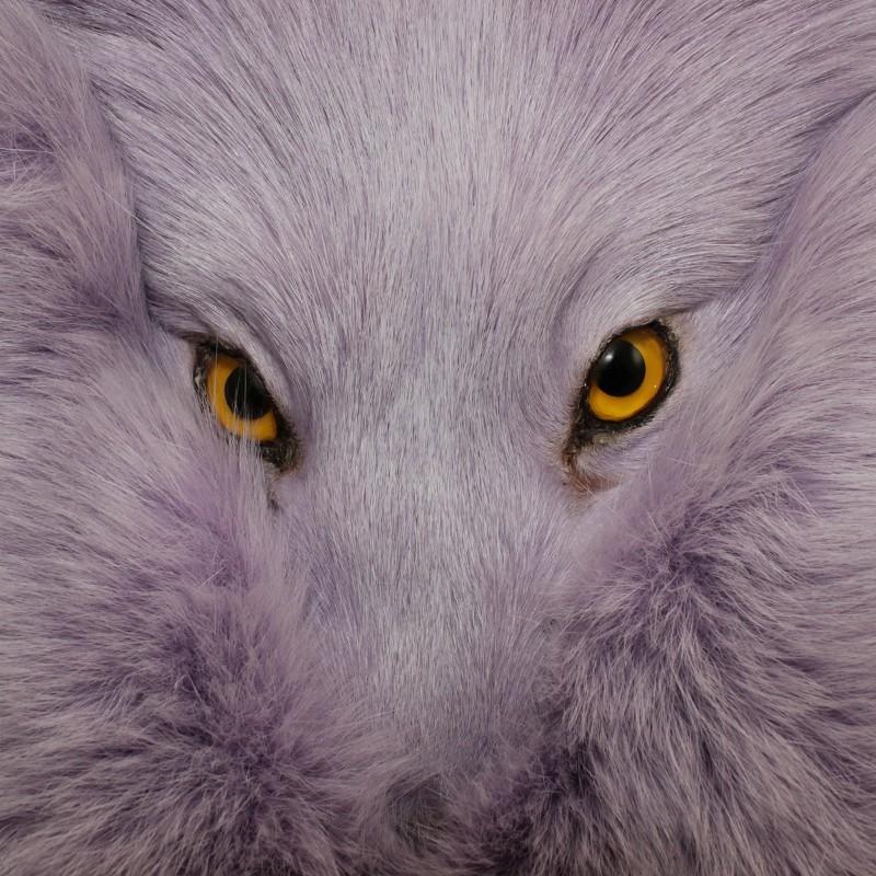 Lilac dyed Artic Fox Sporran